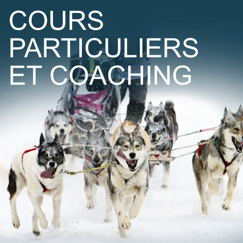 cours particuliers et coaching